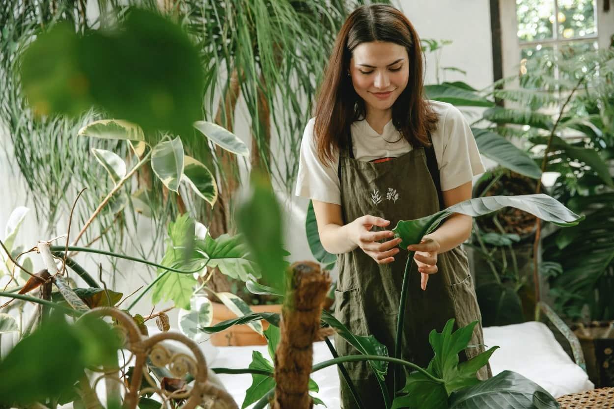 Mujer en negocio de plantas
